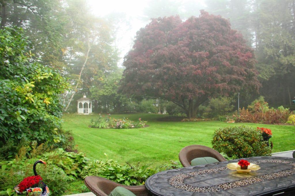 Forty-Putney-Rd-backyard1-morning-fog-Eaton-2013.09.28