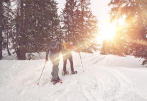 winter Activities in Brattleboro
