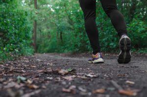 Brattleboro Retreat Trails