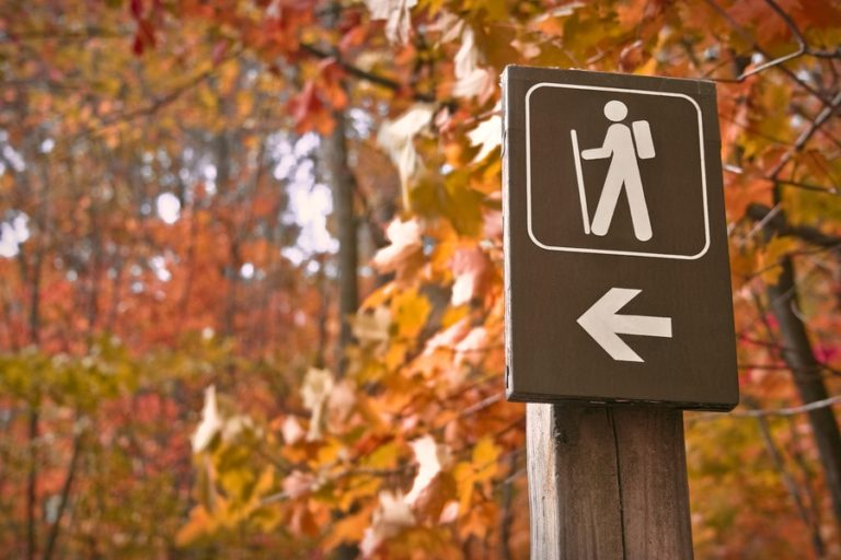 Sign pointing to great fall hiking trails in the autumn woods
