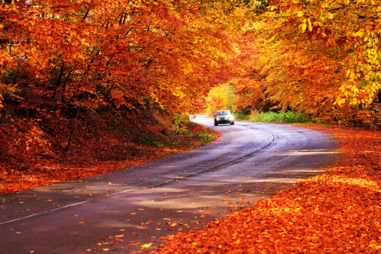 Vermont in the fall is full of beautiful scenic drives like this one